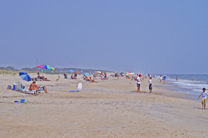 The beach at Assateague Island